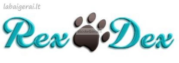 REXDEX.LT - šunų maistas vertinantiems kokybę ir prieinamą kainą.-alioskelbimai