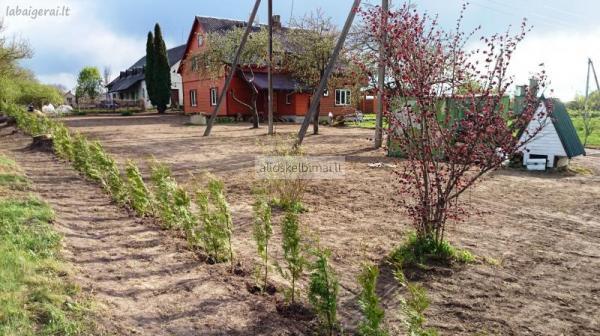 Vejos Įrengimas, vejos priežiūra apželdinimas Utenoje.-alioskelbimai