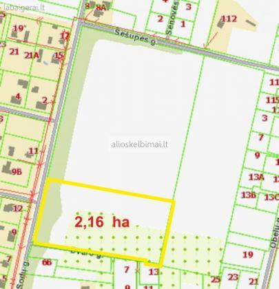 Sklypas 2,16 ha - Marijampolėje, Mokoluose-alioskelbimai