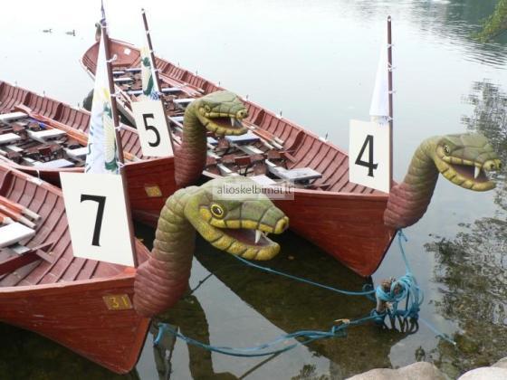 Vikingų laivai, drakonai - komandos formavimas-alioskelbimai
