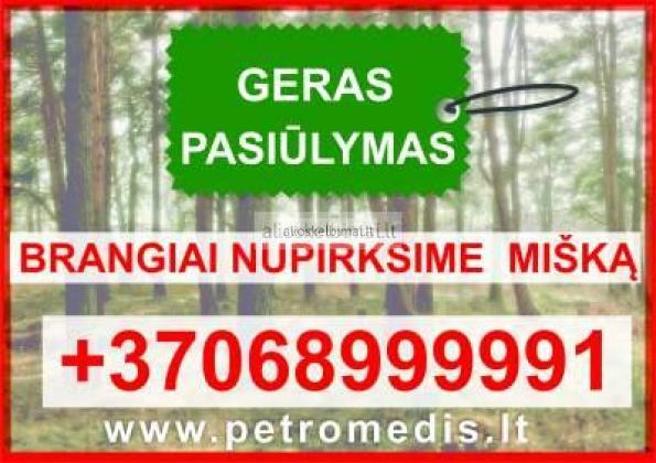 Brangiai perkame miškus visoje Lietuvoje-alioskelbimai