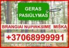 Brangiai perkame miškus visoje Lietuvoje