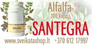 Alfalfa 100 kaps -  maisto papildas SANTEGRA / mob: 8 612 17997